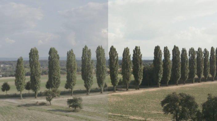 VR-Copter_First-Mavic-Pro-2-Test---Hasselblad---DLogM-vs.-Grading_Luftaufnahmen_mit_der_Drohne_Stuttgart